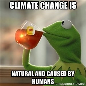 Kermit The Frog Drinking Tea - Climate change is  natural and caused by humans