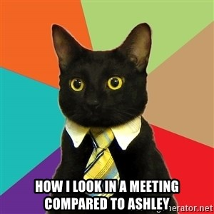 Business Cat - how I look in a meeting compared to Ashley