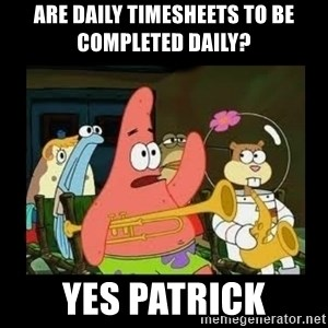 Patrick Star Instrument - are daily timesheets to be completed daily? yes patrick