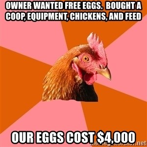 Anti Joke Chicken - Owner wanted free eggs.  Bought a coop, equipment, chickens, and feed Our eggs cost $4,000