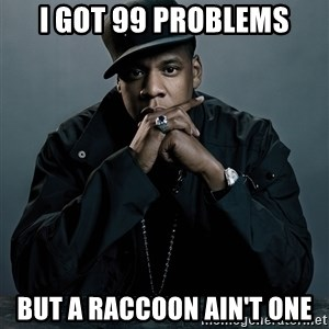 Jay Z problem - I got 99 problems But a raccoon ain't one