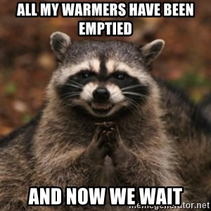 evil raccoon - All my warmers have been emptied And now we wait