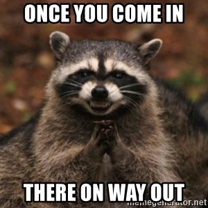 evil raccoon - once you come in  there on way out