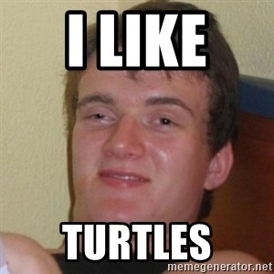Really Stoned Guy - i like  Turtles