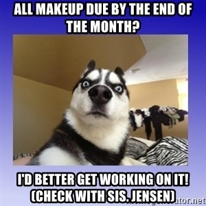 Dog Surprise - All makeup due by the end of the month? I'd better get working on it! (check with sis. jensen)