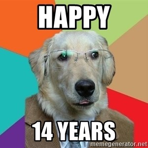 Business Dog - Happy 14 years