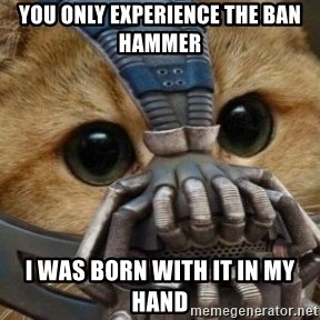 bane cat - You only experience the ban hammer I was born with it in my hand