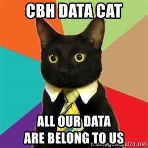 Business Cat - cbh data cat all our data                                          are belong to us