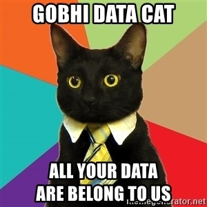 Business Cat - GOBHI data cat all your data                                       are belong to us