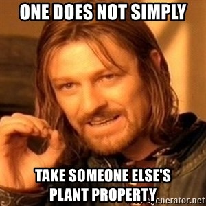 One Does Not Simply - One does not simply take someone else's             plant property
