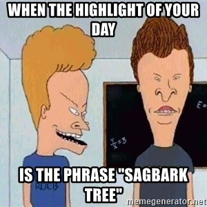 "Beavis and butthead - When the highlight of your day Is the phrase ""Sagbark Tree"""
