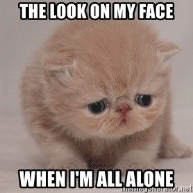 Super Sad Cat - The look on my face When I'm all alone