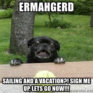Ermahgerd Pug - ermahgerd sailing and a vacation?! sign me up, lets go now!!!
