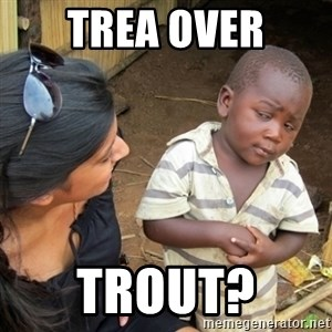 Skeptical 3rd World Kid - Trea over Trout?