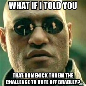 What If I Told You - What if I told you That Domenick threw the challenge to vote off Bradley?