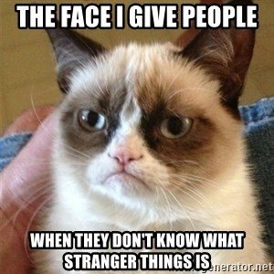 Grumpy Cat  - The face I give people When they don't know what Stranger Things is