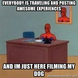 and im just sitting here masterbating - Everybody is traveling and posting awesome experiences And im just here filming my dog