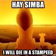 The Lion King - hay simba i will die in a stampeed