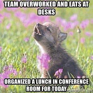 Baby Insanity Wolf - team overworked and eats at desks  organized a lunch in conference room for today