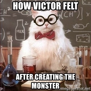 Chemistry Cat - how victor felt after creating the monster