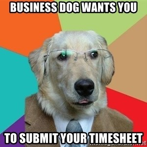 Business Dog - Business dog wants you to submit your timesheet