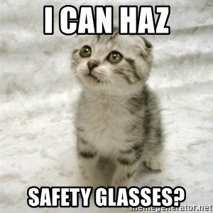 Can haz cat - I can haz safety glasses?