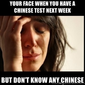 First World Problems - Your face when you have a chinese test next week But don't know any Chinese