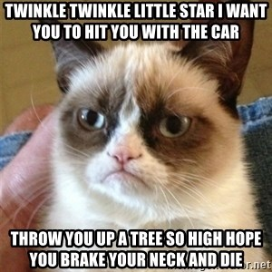 Grumpy Cat  - Twinkle twinkle little star i want you to hit you with the car Throw you up a tree so high hope you brake your neck and die