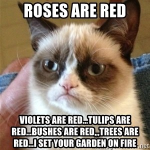 Grumpy Cat  - roses are red violets are red...tulips are red...bushes are red,,,trees are red...i set your garden on fire