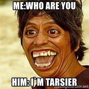 Crazy funny - me:who are you him: I`m tarsier