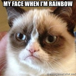 Angry Cat Meme - my face when I'm rainbow