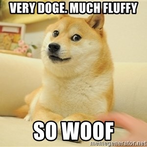 so doge - VERY DOGE. MUCH FLUFFY SO WOOF