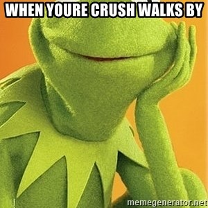 Kermit the frog - WHEN YOURE CRUSH WALKS BY