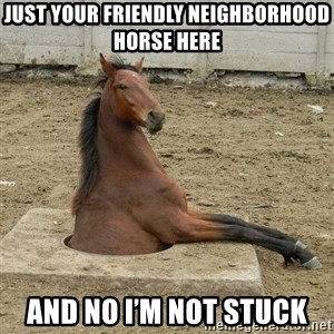Hole Horse - Just your friendly neighborhood horse here And no I'm not stuck