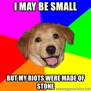 Advice Dog - i may be small but my riots were made of stone