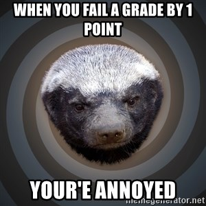 Fearless Honeybadger - when you fail a grade by 1 point your'e annoyed