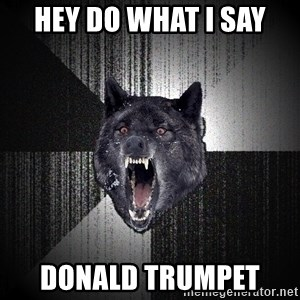 Insanity Wolf - Hey do what i say  Donald Trumpet