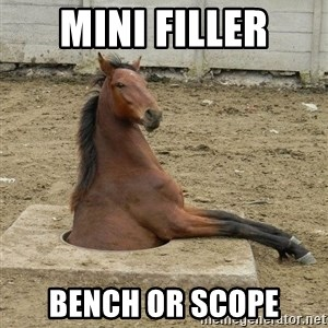 Hole Horse - Mini filler Bench or Scope