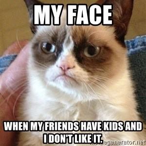 Grumpy Cat Face - My face When my friends have kids and i don't like it.