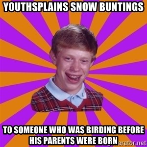 Unlucky Brian Strikes Again - youthsplains snow buntings to someone who was birding before his parents were born