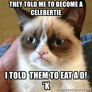 Grumpy Cat  - they told me to become a celebertie i told  them to eat a d!*k