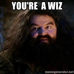 Yer A Wizard Harry Hagrid - YOU'RE  a wiz