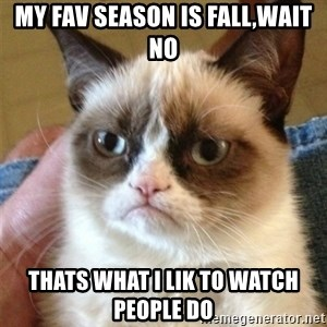 Grumpy Cat  - My fav season is fall,wait no Thats what I lik to watch people do