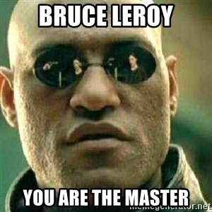What If I Told You - bruce leroy you are the master
