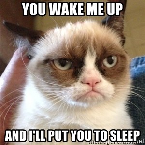 Mr angry cat - you wake me up and I'll put you to sleep