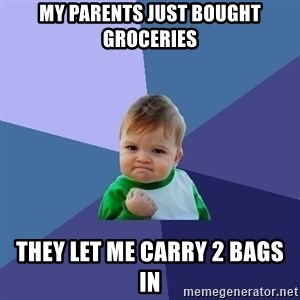 Success Kid - My parents just bought groceries They let me carry 2 bags in