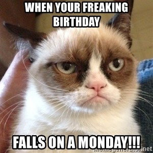 Grumpy Cat 2 - When your freaking birthday falls on a monday!!!
