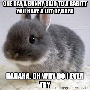ADHD Bunny - One day a bunny said to a rabitt you have a lot of hare Hahaha. Oh why do I even try