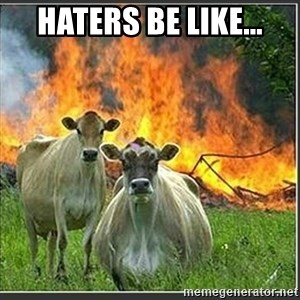 Evil Cows - haters be like...