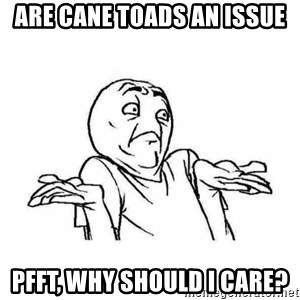 Wala talaga eh - Are cane toads an issue pfft, Why should i care?